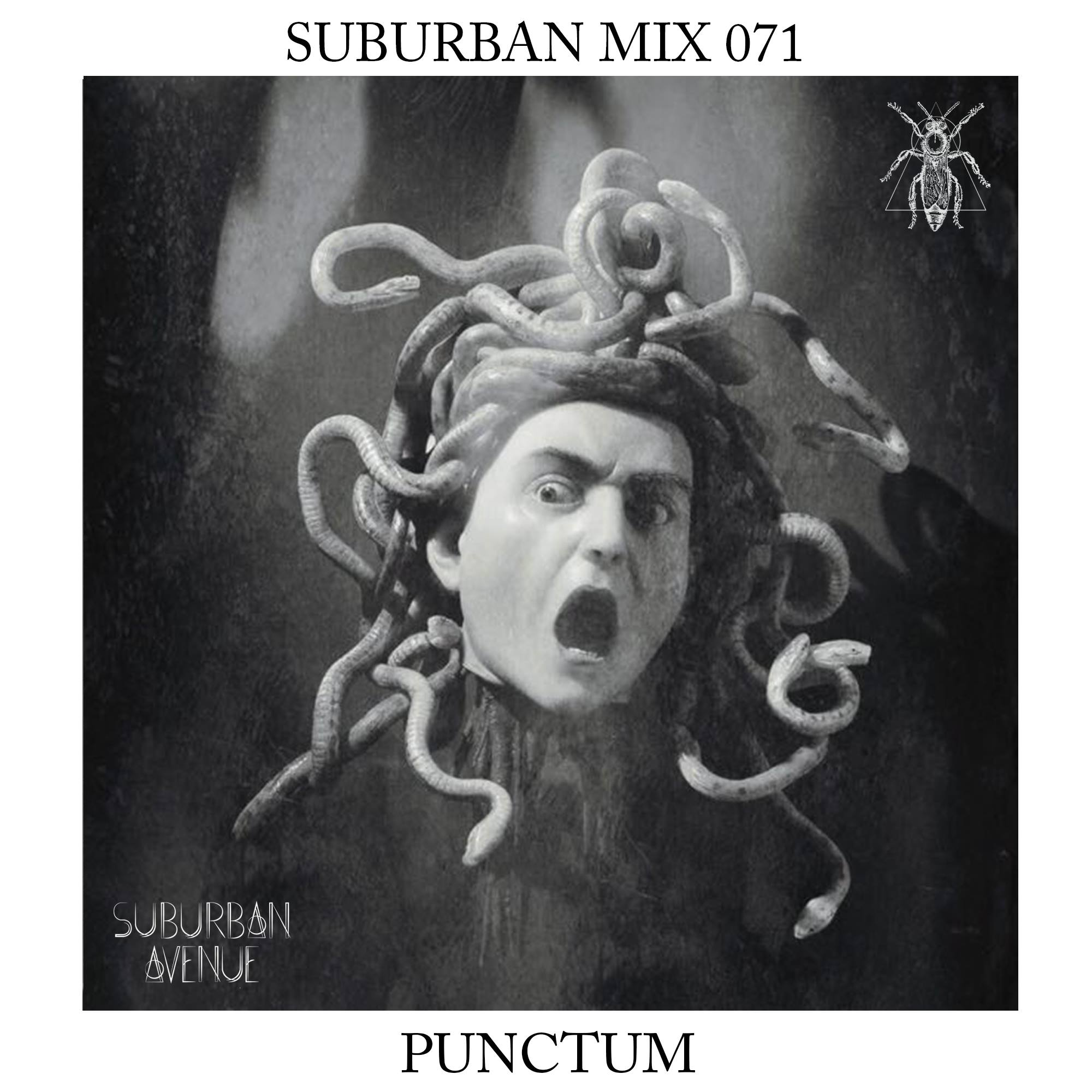 Suburban Mix 071- Punctum